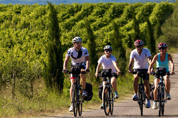 Provence Bike Tours Discover France